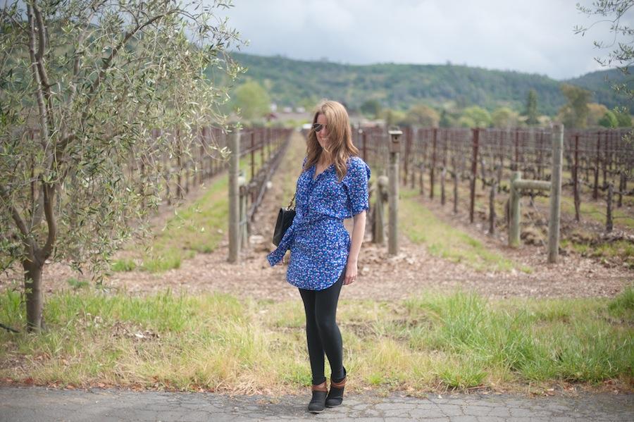 Kate at Honig Winery Vineyards, Napa