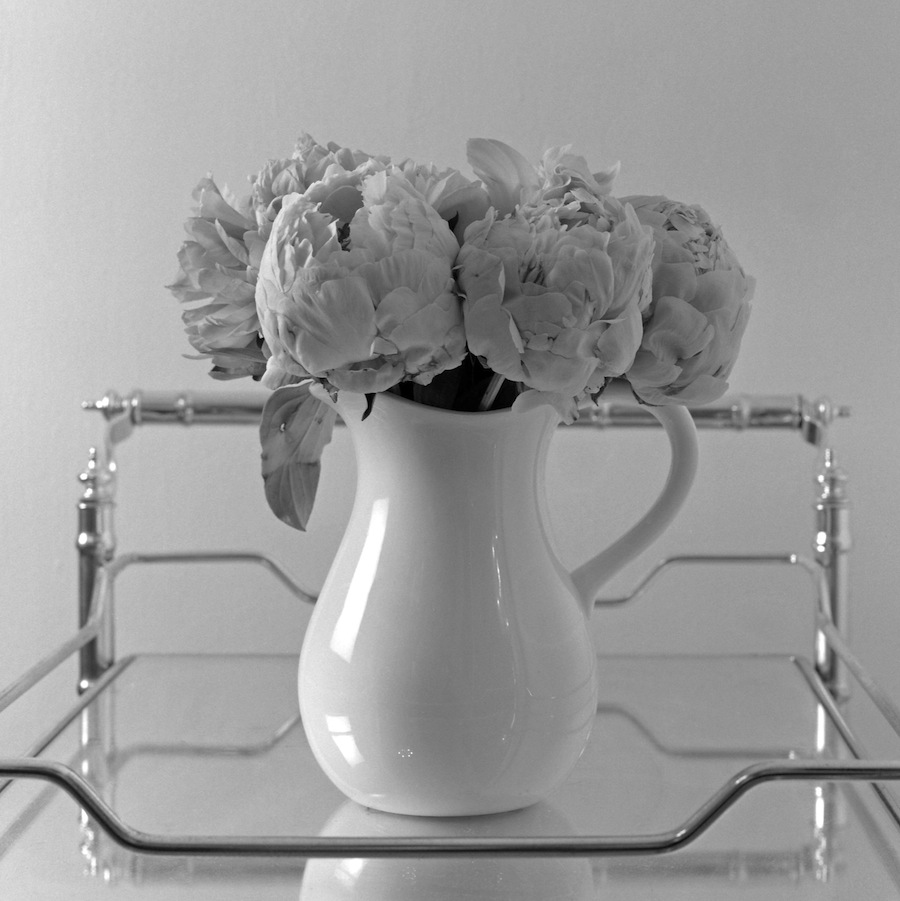 Vase of Peonies on Barcart, Fuji Neopan Acros 100 Film