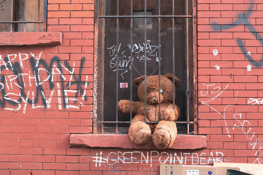 Greenpoint Bear, Brooklyn