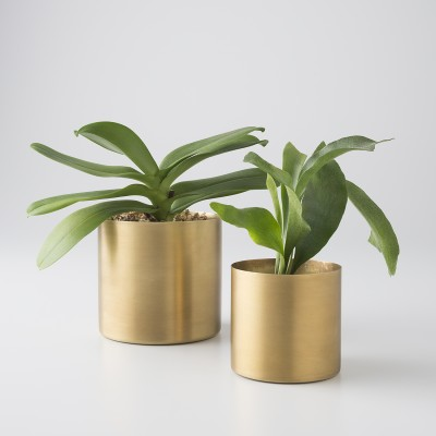 Can you have too many planters for your plants?