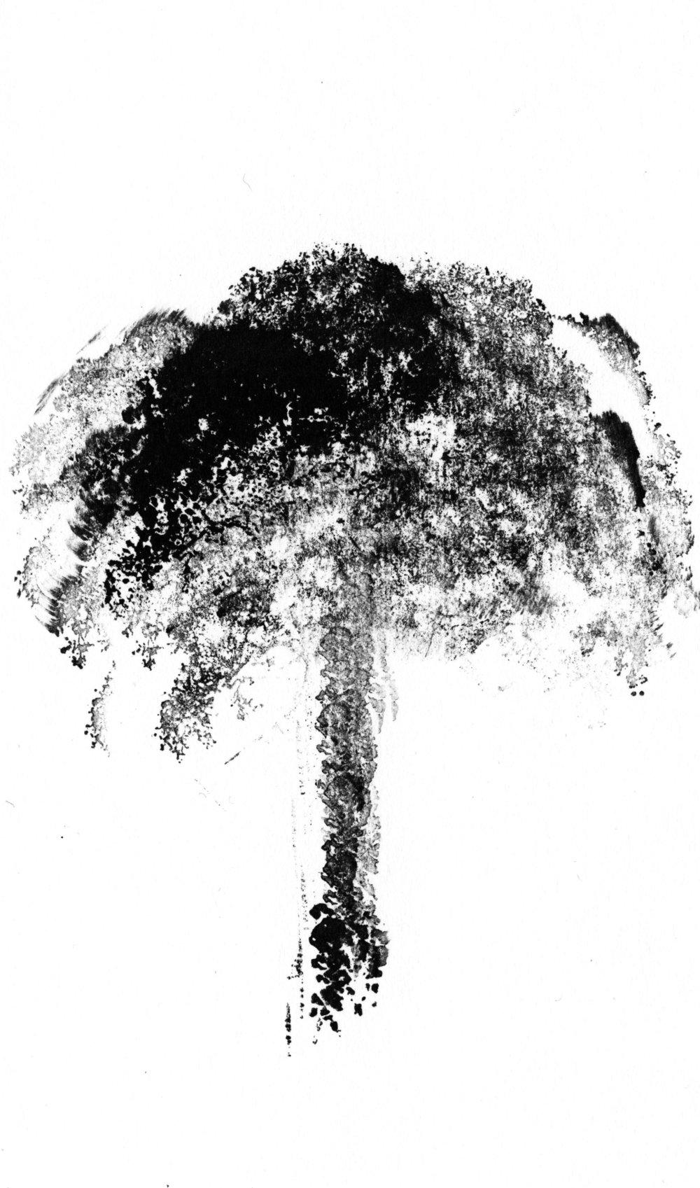 trees_white02.jpg