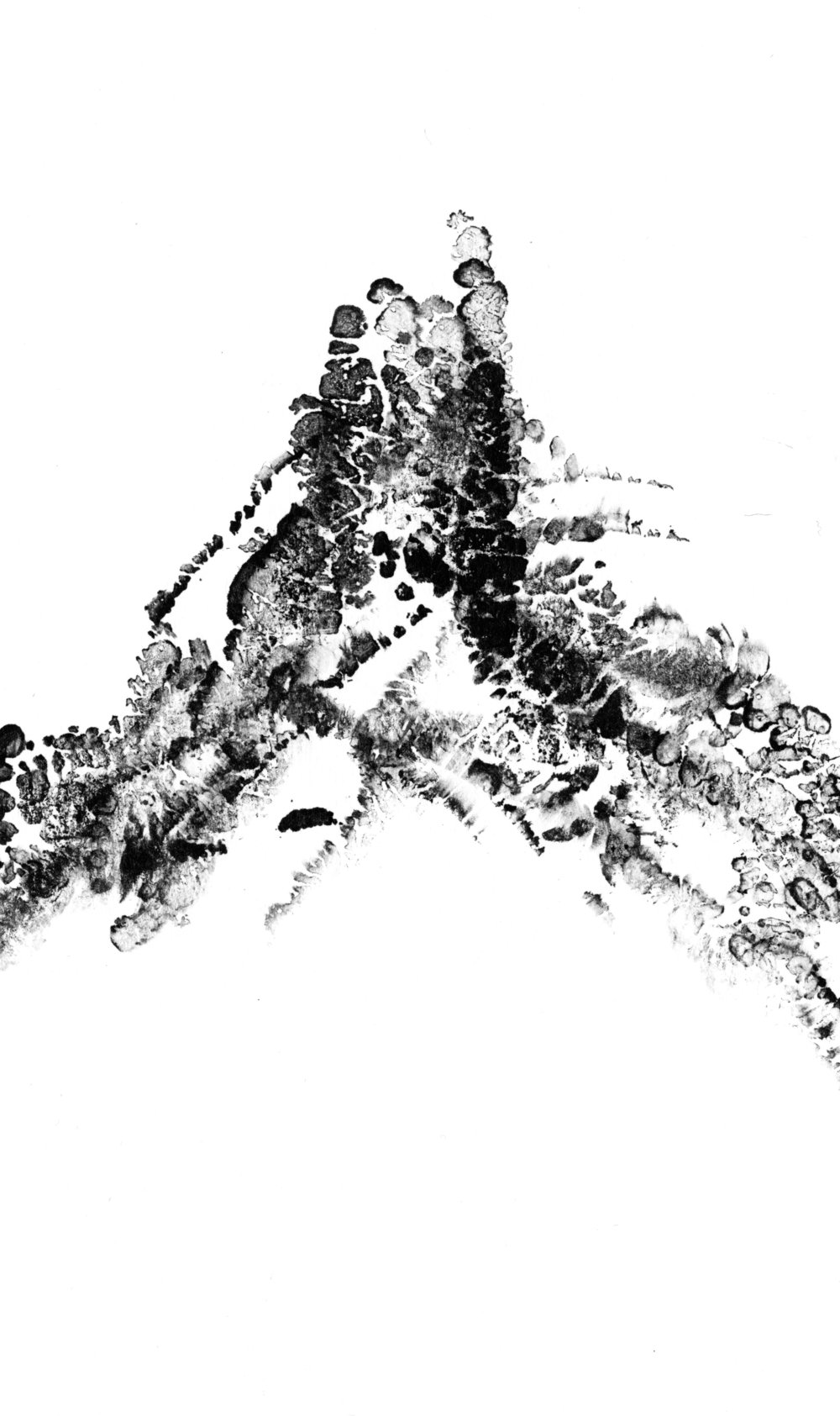 trees_white04.jpg