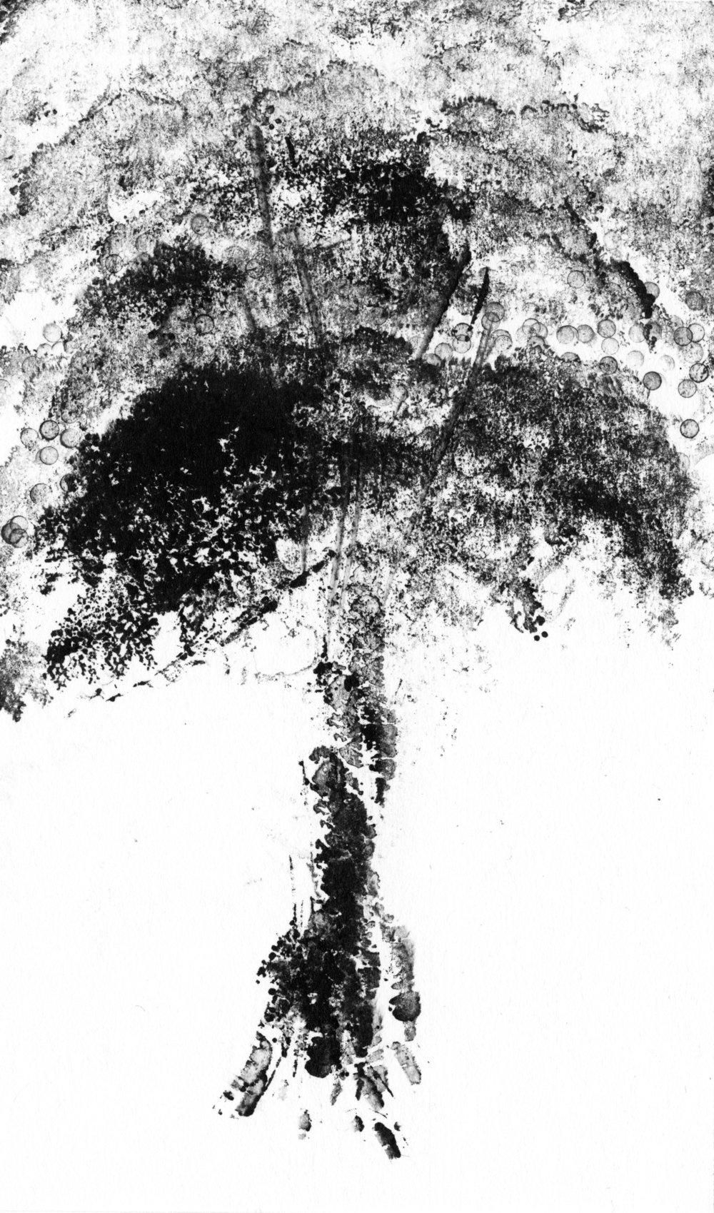trees_white07.jpg