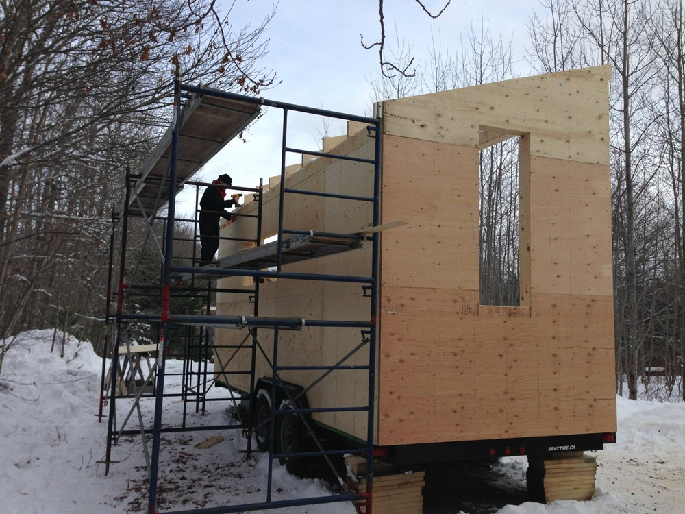 Harmony house installing exterior sheathing full moon for Exterior wall sheeting