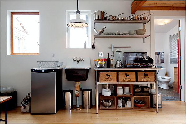 Michelle-de-la-Vega-tiny-house-kitchen.jpg