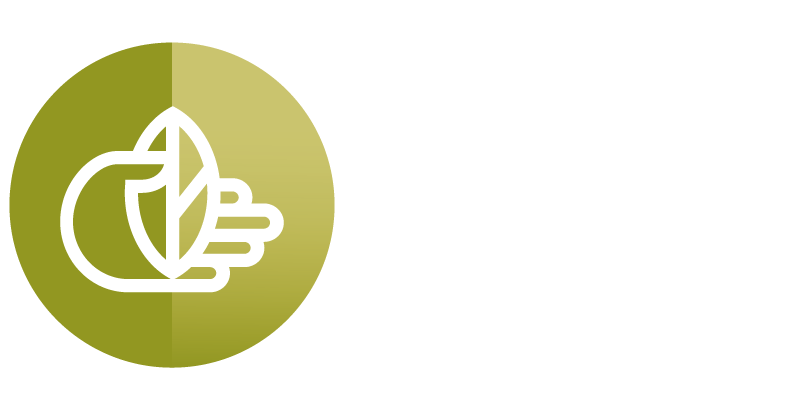 THE LORD'S CHILD