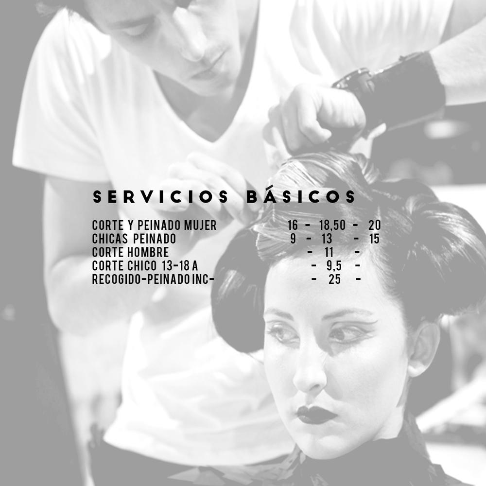 SERICIOS BASICOS.jpg