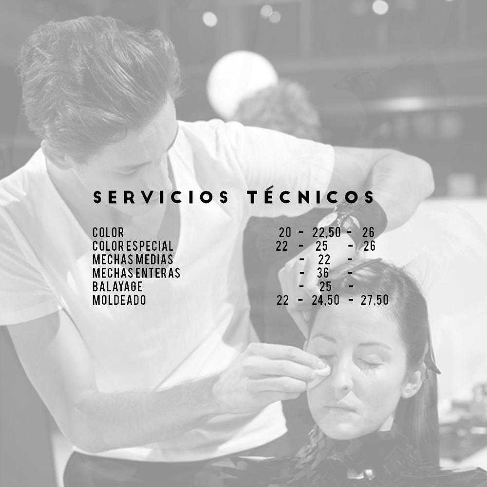 SERVICIOS TECNICOS copia.jpg