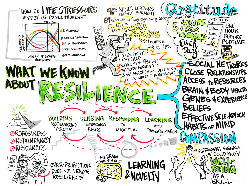 04-What-We-Know-About-Resilience.jpg