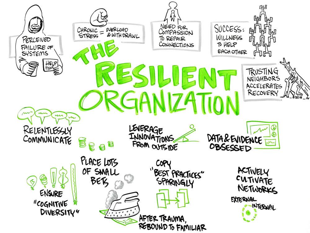 06-The-Silient-Organization.jpg
