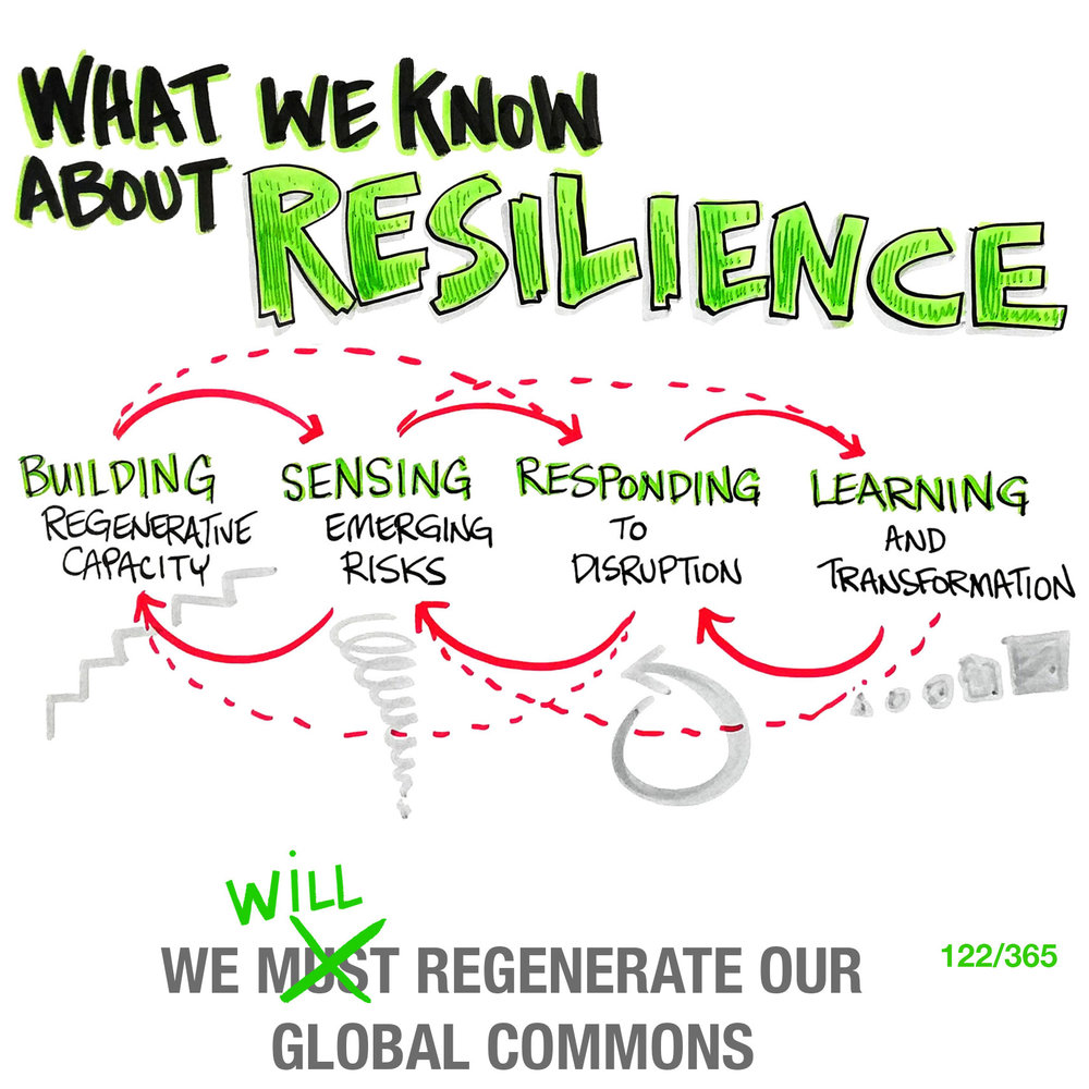 What We Know About Resilience