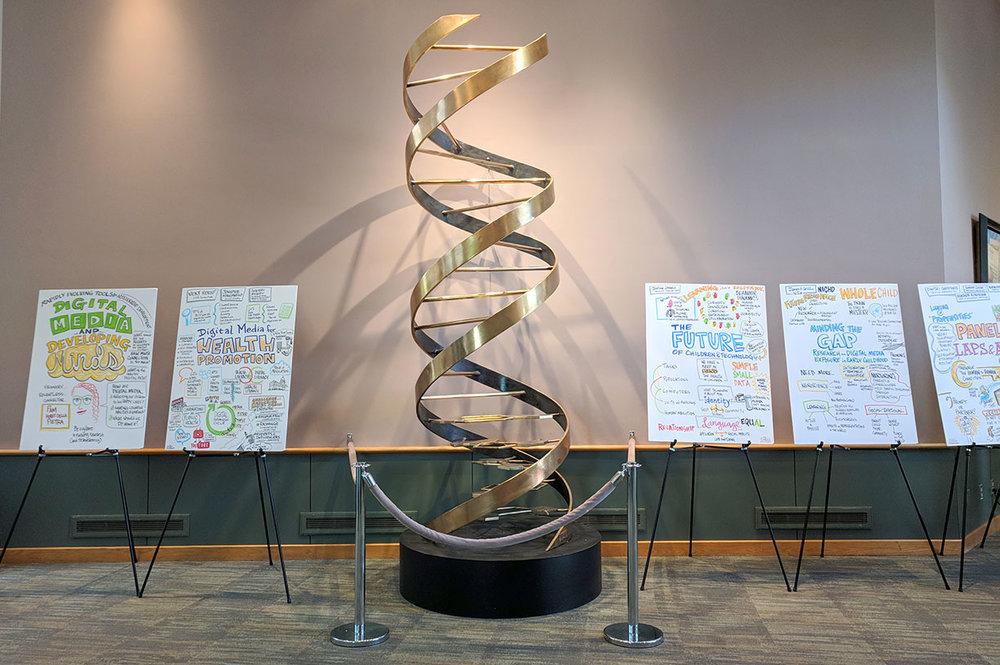 DNA-DMDM2018.jpg