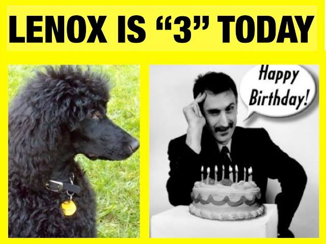 APRIL 26, 2014. HAPPY THIRD BIRTHDAY LENOX!!!