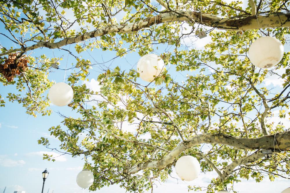 Battery Gardens - Brooklyn Wedding Photographers