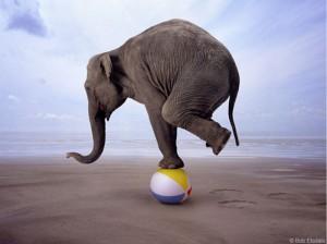 gop_balancing_act23-300x224.jpg