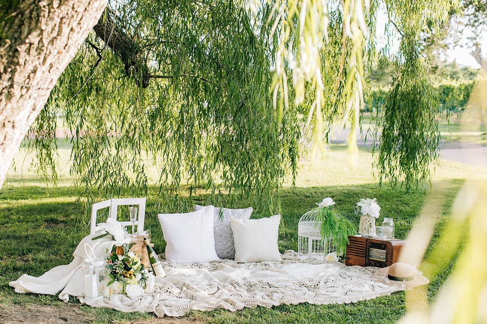 An Airy Summer Engagement Session at Willow Creek Winery in Cape May, NJ by Magdalena Studios_0010.jpg