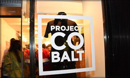 ProjectCobaltSS15.jpg