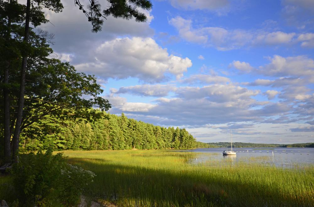 NH Audubon 2013-08-15 233.jpg