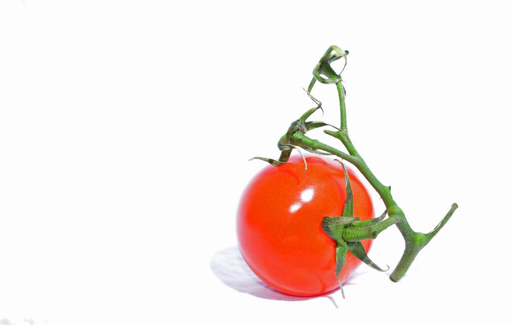 Starfish tomato.jpg