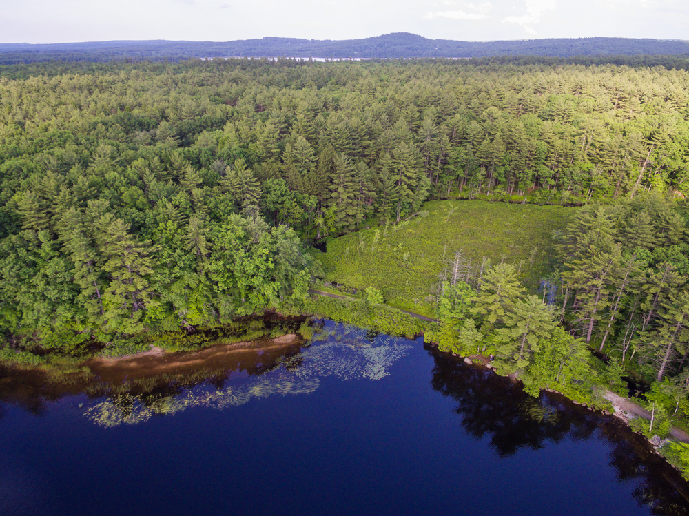 Drone, Lake Massabesic-34.jpg