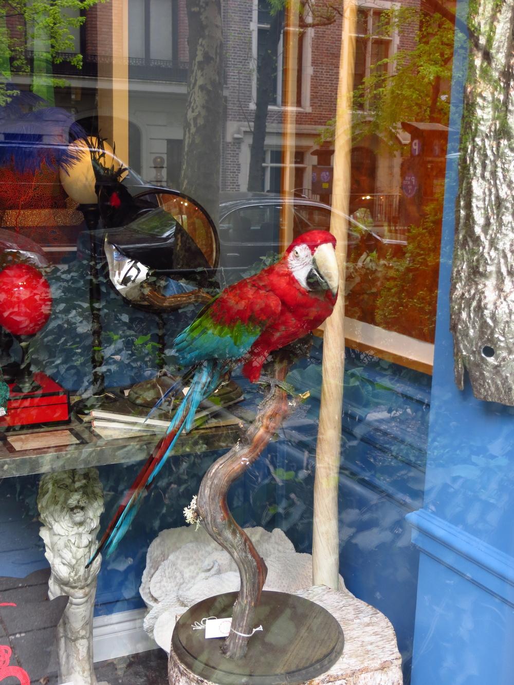 An ex-parrot