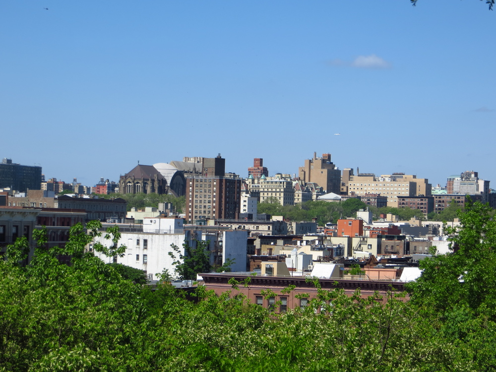 View from Marcus Garvey Park