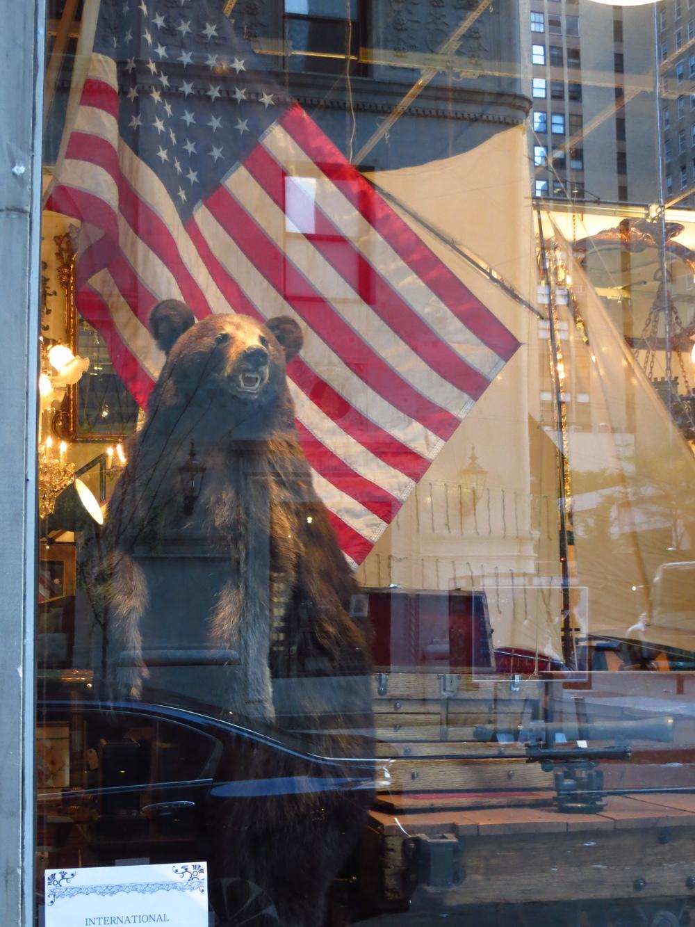 The America Store