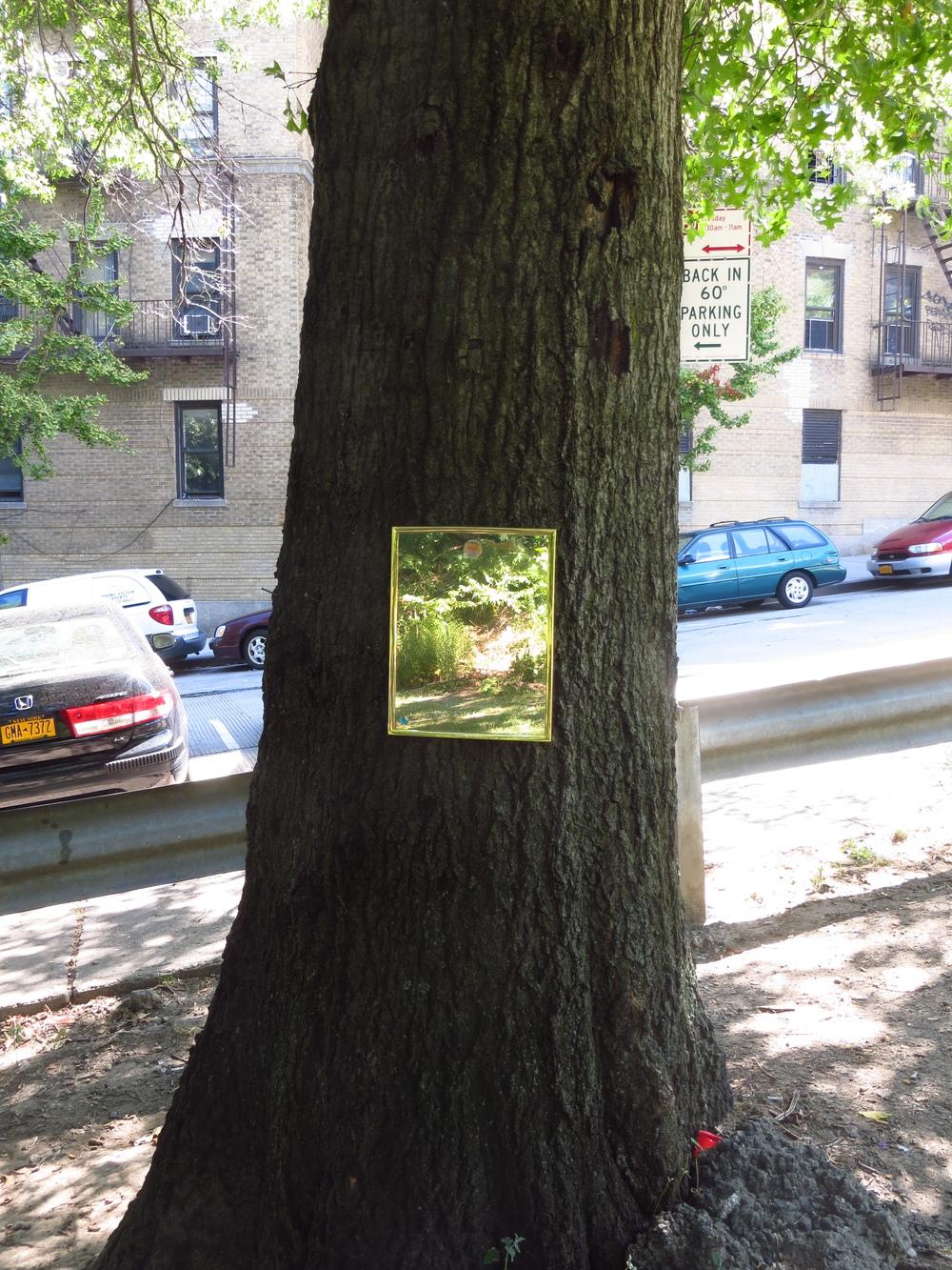 Tree mirror