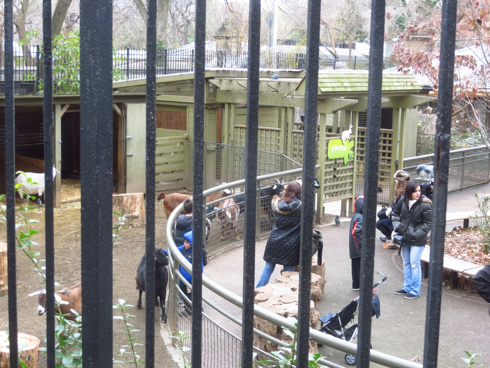 Central Park Children's Zoo