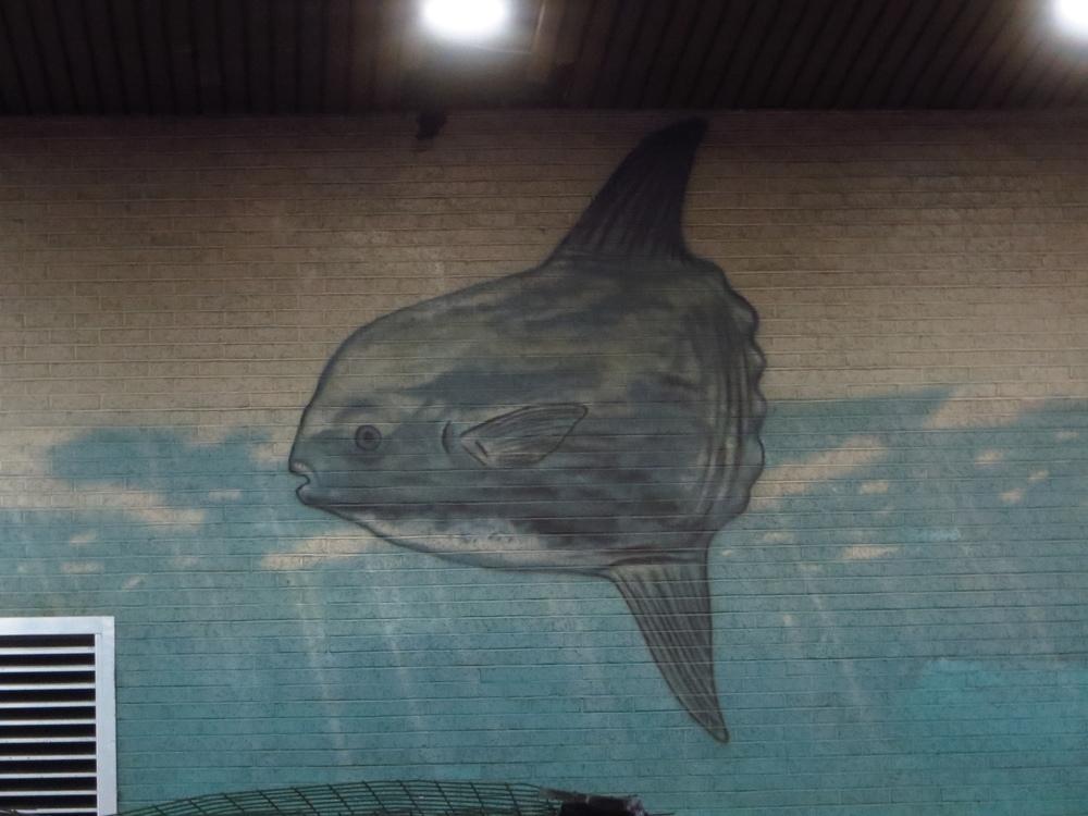 Mola Mural