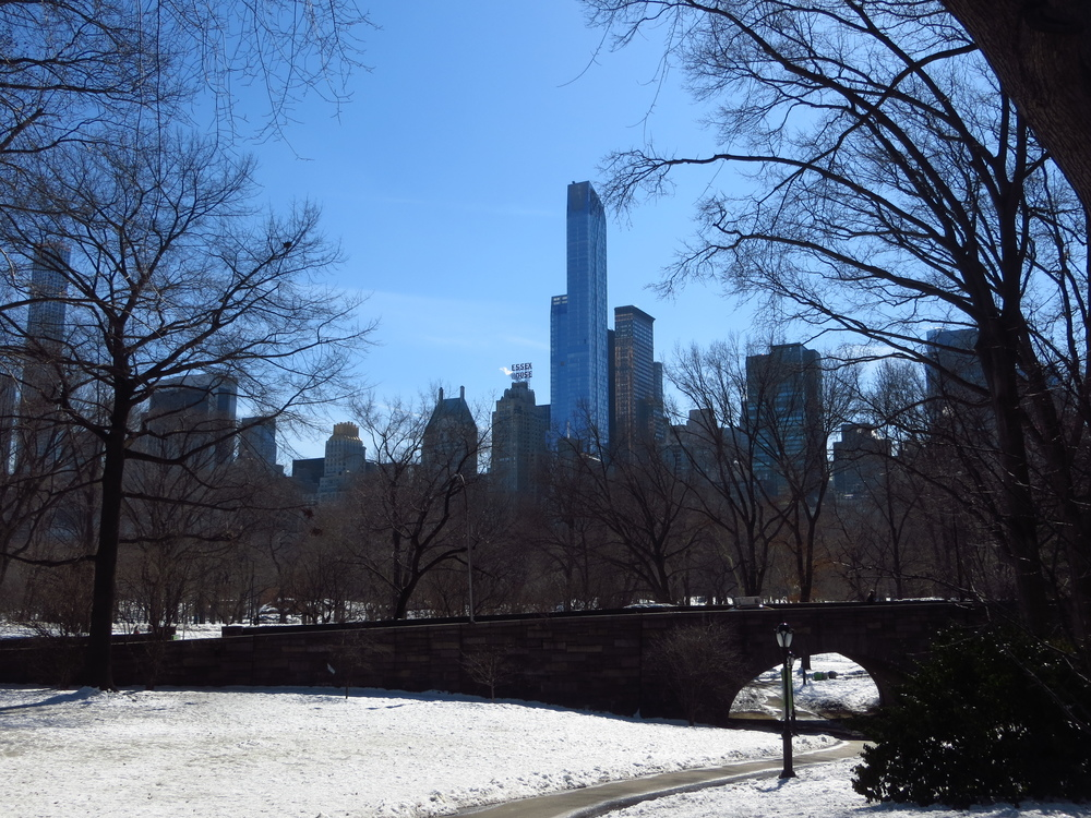 View of Midtown through Central Park
