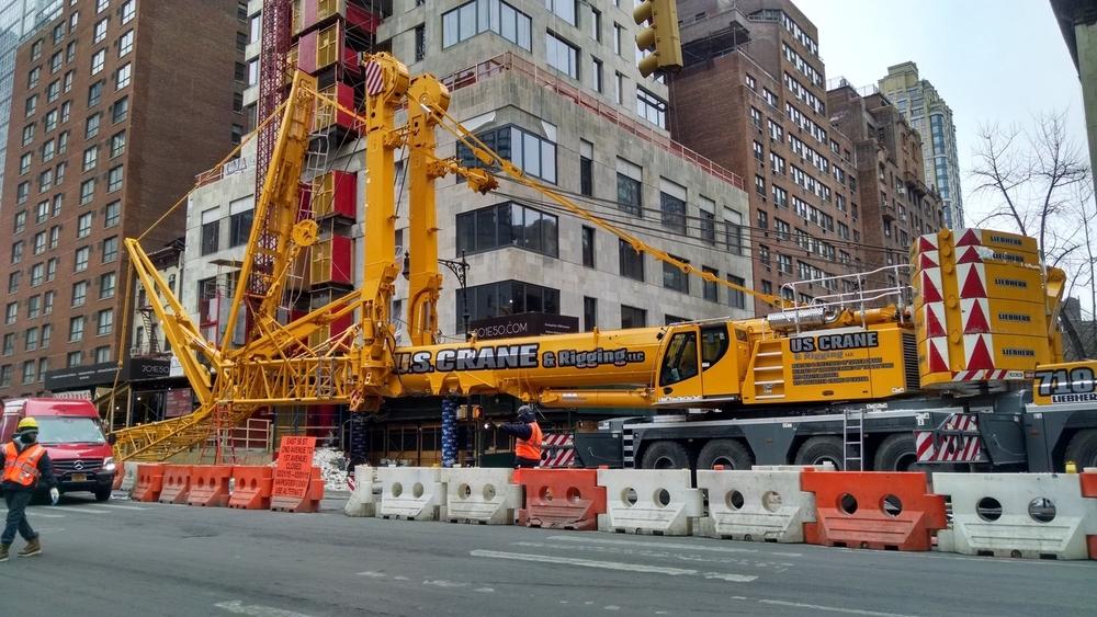 Crane in Repose