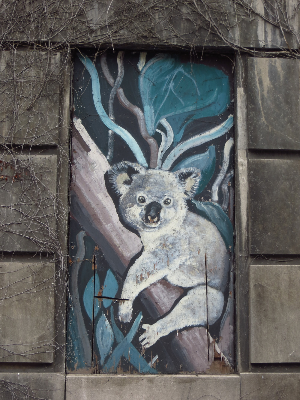 Koala on Boarded-Up Window of Former Psychiatric Hospital