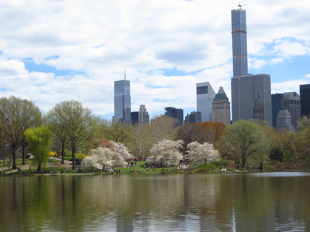 View of Midtown from Central Park