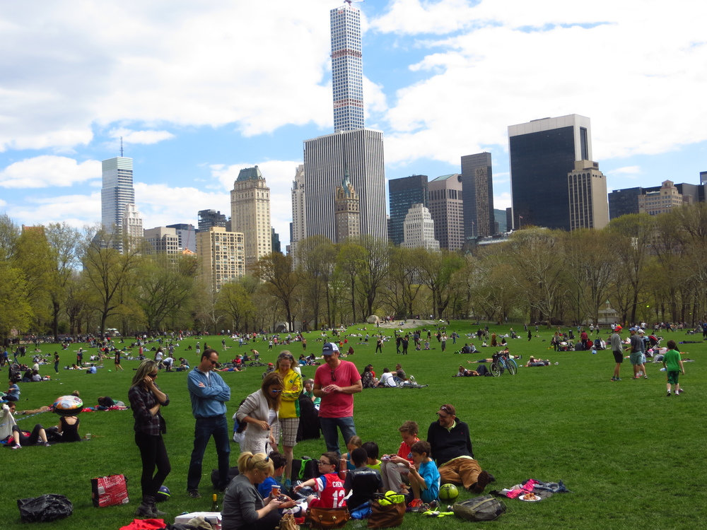 Sheep Meadow on a nice day