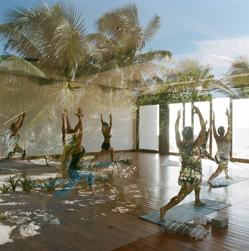 Yoga & Events - Experience yoga with world-class teachers in a studio with a view!