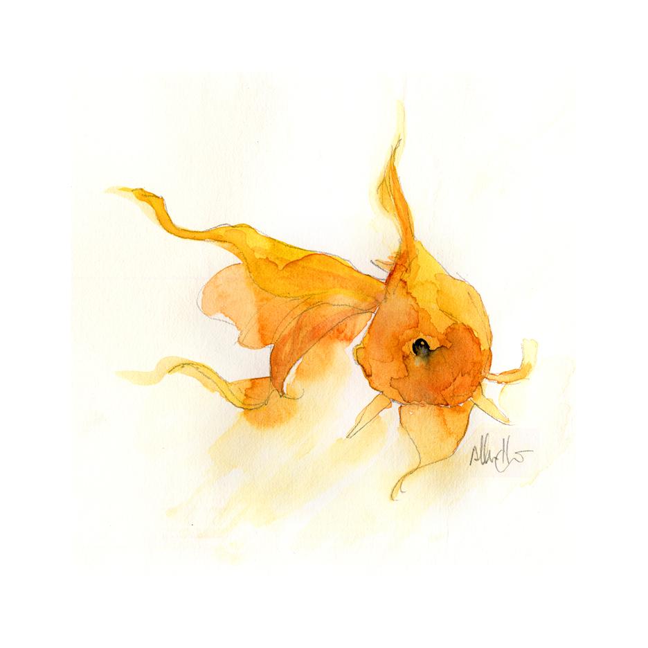 goldfish+pan-wcw-31dec2014.jpg