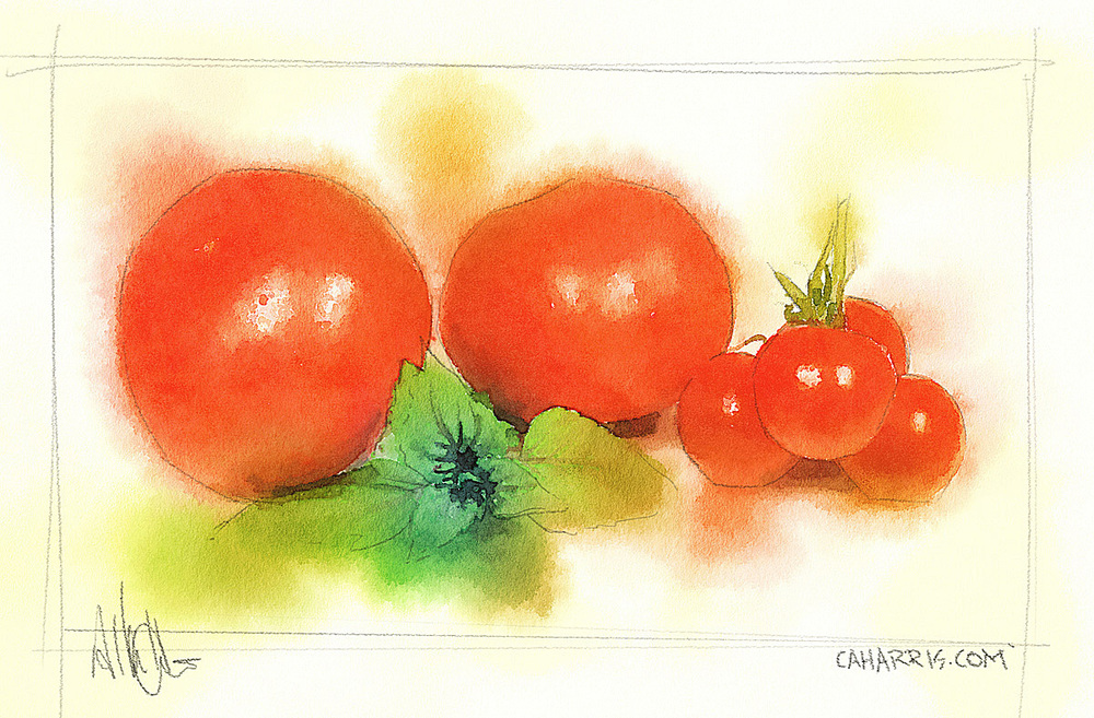 Digital painting. Watercolor and pencil and tomatoes.