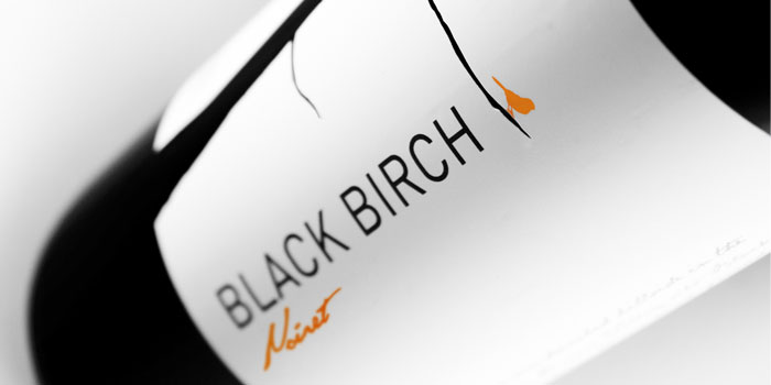 01 14 13 blackbirch 1