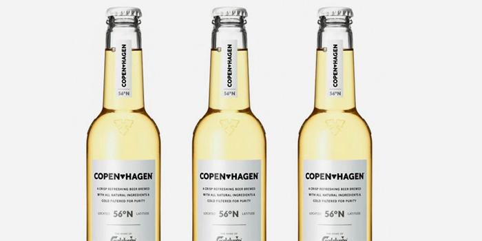 04 07 13 copenhagen 1
