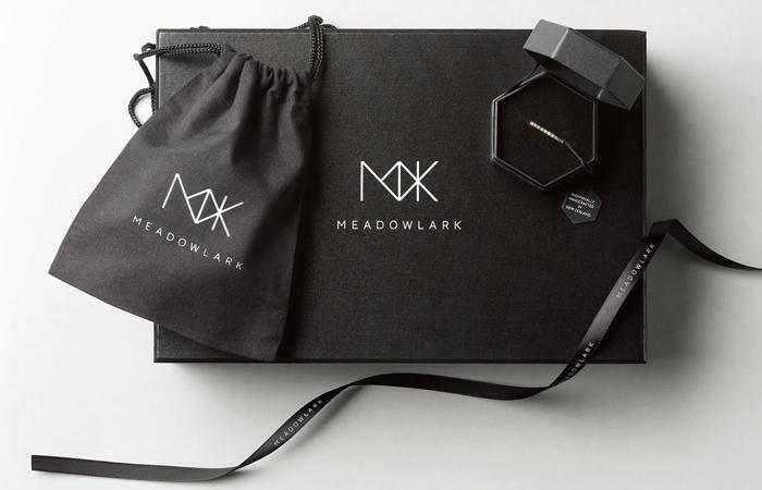 12 1 2013 meadowlark 1
