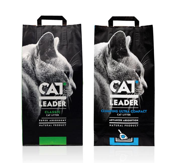 10 01 13 catleader 2