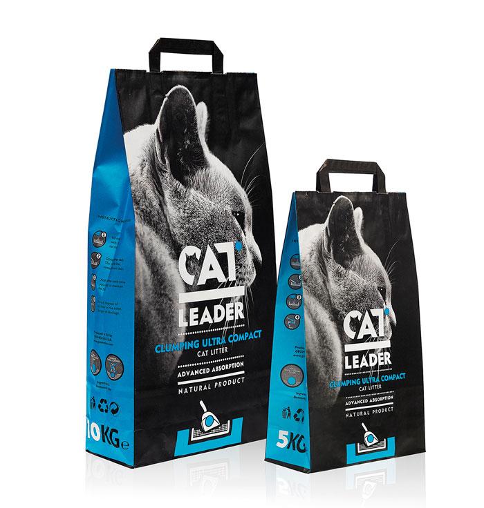 10 01 13 catleader 3