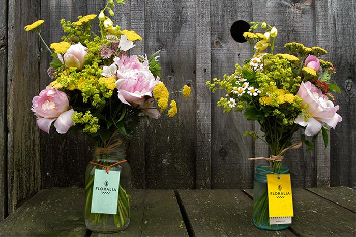 11 26 13 Floralia 5