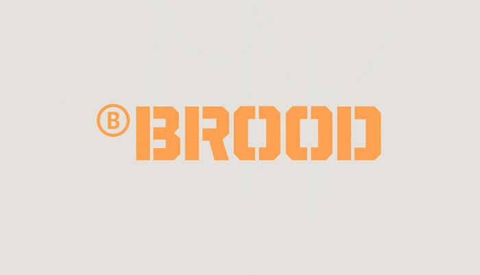 02 15 13 brood 2