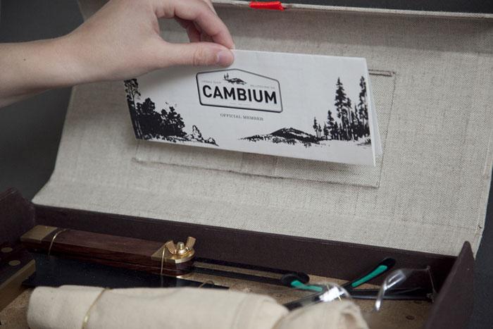 CAMBIUM LETTERHAND2 905