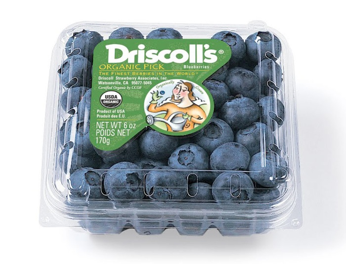 02 15 13 driscolls 8