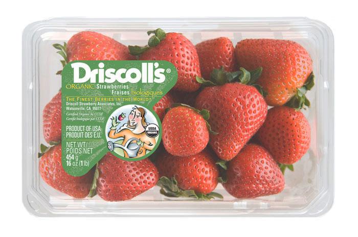 02 15 13 driscolls 6