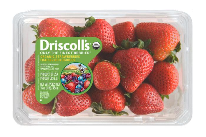 02 15 13 driscolls