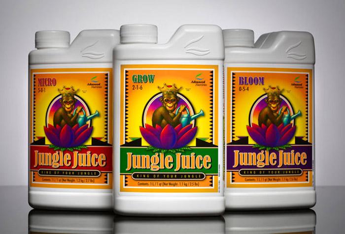 AN Jungle 620
